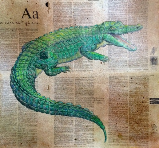 alligator-drawing